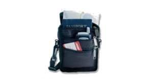 Join Aarp Free Insulated Travel Bag