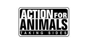 action-for-animals